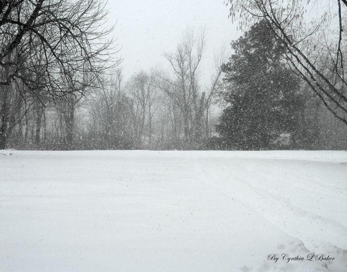 Western Kentucky Snow
