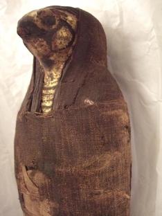Falcon_mummy