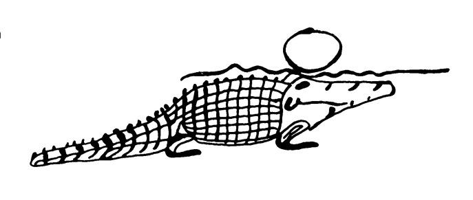 rylands-croc-image