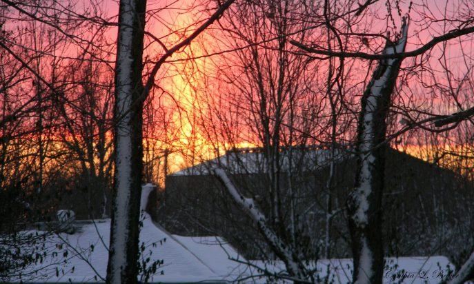 cropped-sunrise2.jpg