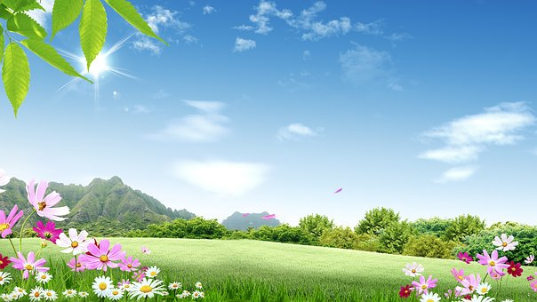 nature-1607153__340